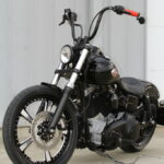 Black Betty: Just a Simple Harley Davidson Bobber… Nothing Special