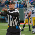 pleeing referee 150x150 Shutting Down Strasburg: Effective or Overprotective?
